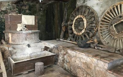 Granollers / Centelles (Moli de la Llavina – Font Grossa – Balma del Sant del Purgatori) / Vic / Arboletum MasJoan / Bosc encantat de Gurb