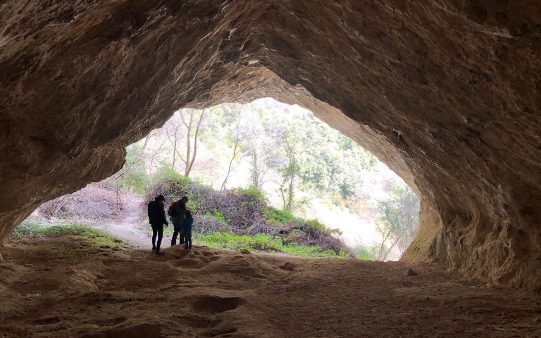 Berga (Cova de Can Mauri)