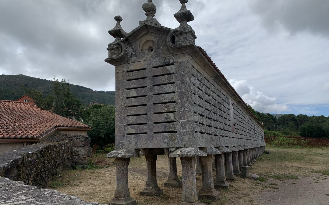 Galícia – Covid19 – 2ona setmana